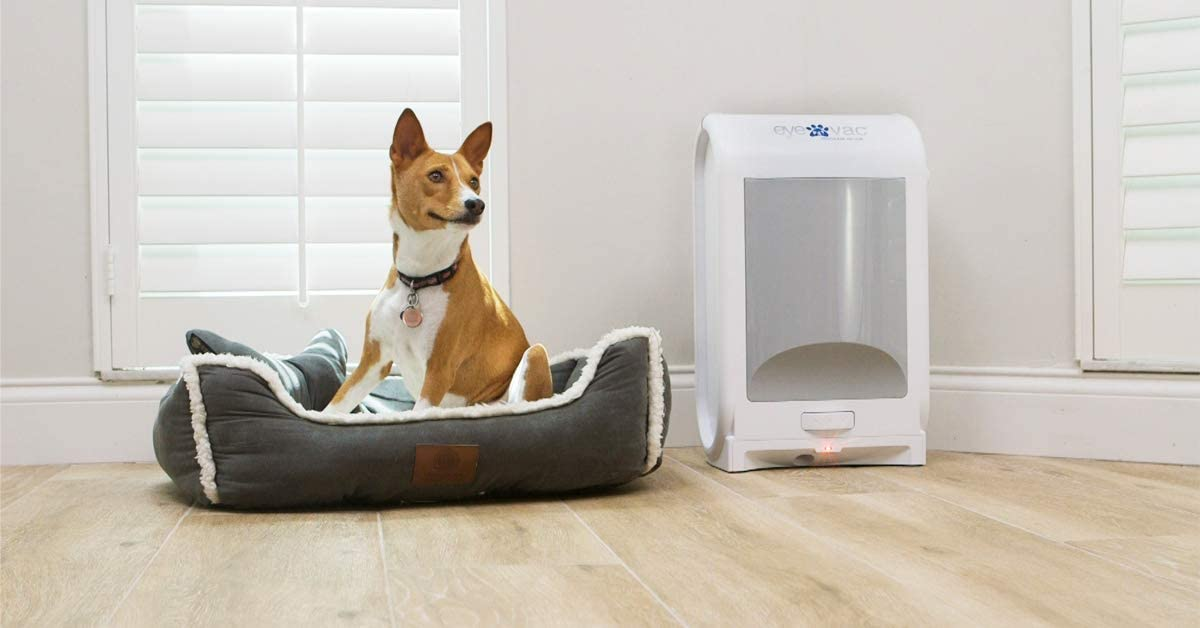 Best Stationary Vacuums
